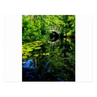 Bridge Over Peaceful Water Postcard