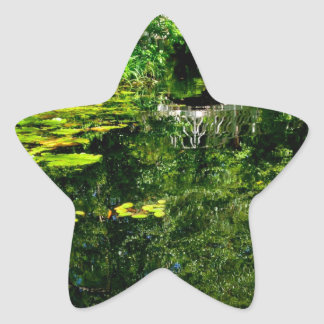 Bridge Over Peaceful Water Star Sticker
