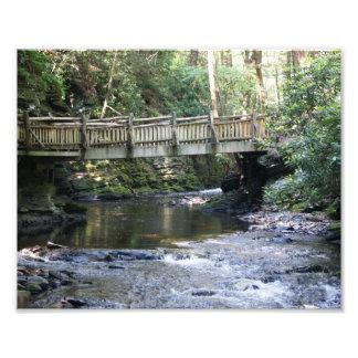 Bridge over River 10 x 8 Photographic Print