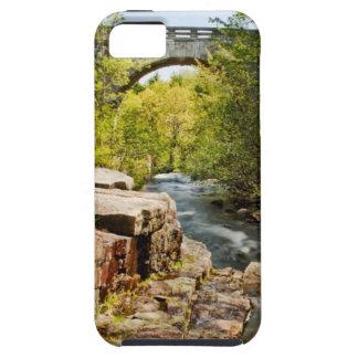 Bridge Over River iPhone 5 Case