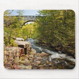 Bridge Over River Mouse Pad