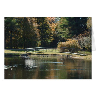 Bridge Over Water- Greeting Card