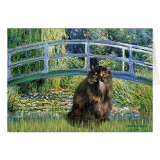 Bridge - Persian Calico cat Greeting Card