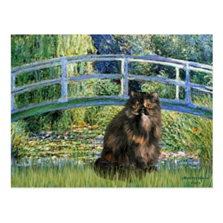 Bridge - Persian Calico cat Postcard
