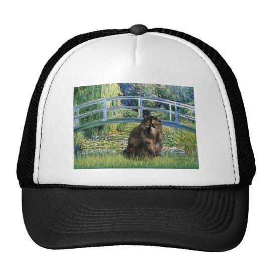 Bridge - Persian Calico cat Trucker Hat