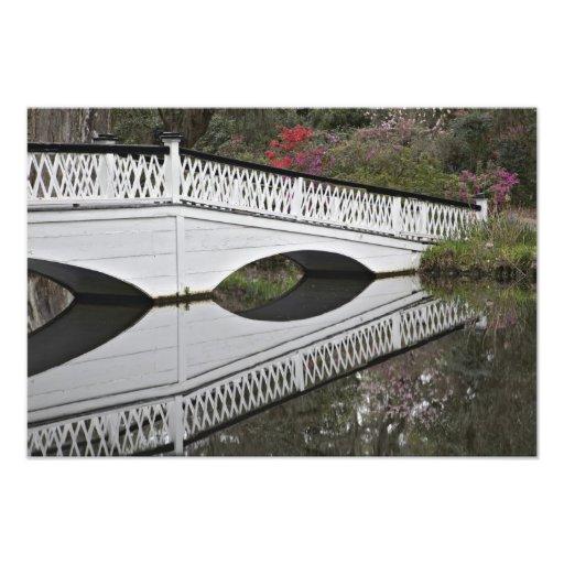 Bridge reflecting on pond, Magnolia Photograph