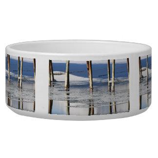 Bridge Reflection Dog Food Bowls