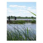 Bridge Ruin Postcard