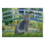 Bridge - Russian Blue cat 2 Card