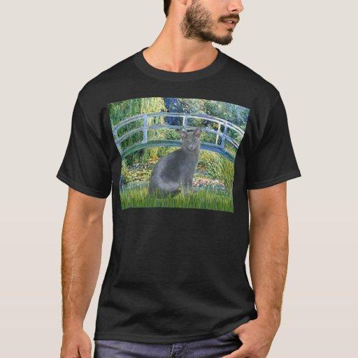 Bridge - Russian Blue cat 2 T-Shirt