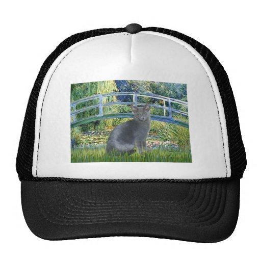 Bridge - Russian Blue cat 2 Trucker Hat