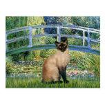 Bridge - Seal Point Siamese cat Post Cards