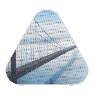 bridge speaker