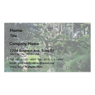 Bridge To Strawberry Hill On Stow Lake In Golden G Business Card Template