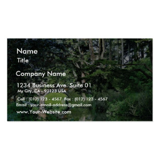 Bridge To Strawberry Hill On Stow Lake In Golden G Business Card Templates