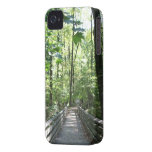 bridge  to the forest iPhone 4 cases