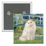 Bridge - White Persian cat Pinback Buttons