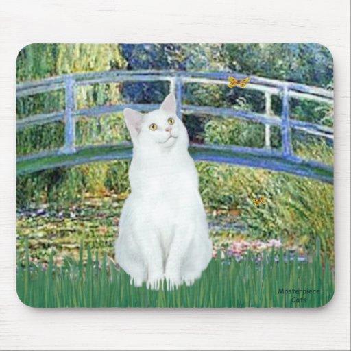 Bridge - White short haired cat Mousepad
