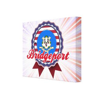 Bridgeport, CT Lona Estirada Galerias