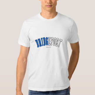 Bridgeport in Connecticut state flag colors Shirt
