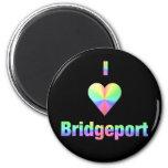 Bridgeport -- Pasteles Imanes De Nevera