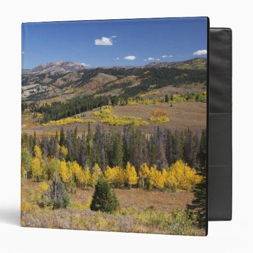 Bridger-Teton National Forest Binder