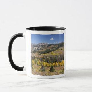 Bridger-Teton National Forest Mug