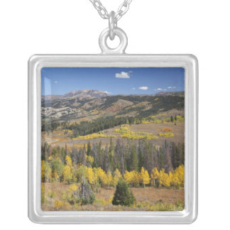 Bridger-Teton National Forest Silver Plated Necklace