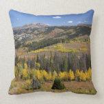 Bridger-Teton National Forest Throw Pillows