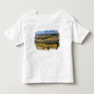 Bridger-Teton National Forest Toddler T-shirt
