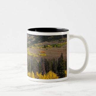 Bridger-Teton National Forest Two-Tone Coffee Mug