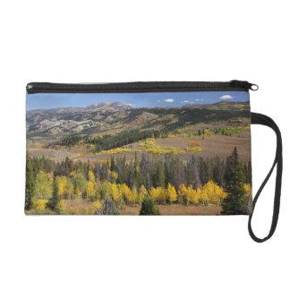 Bridger-Teton National Forest Wristlet Purse
