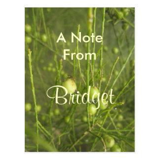 Bridget Tarjeta Postal