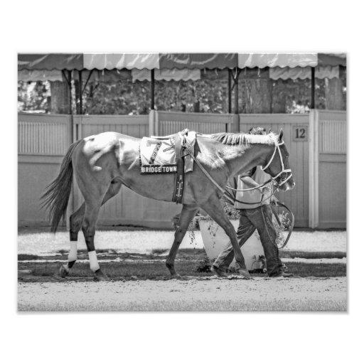 """Bridgetown""  Multi-Stakes winning Turf Sprinter Photo Print"