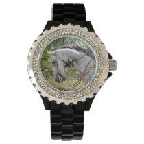 Bridle Horse Watch