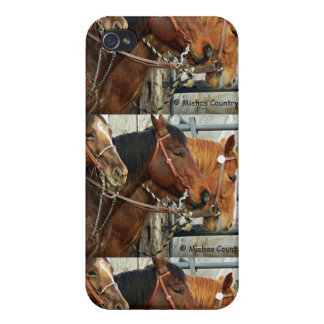 Bridled Horse Heads iPhone 4 Cases
