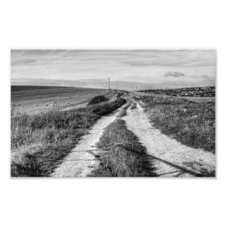 Bridleway Photographic Print