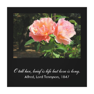 Brief is life but love is long (Alfred Tennyson) Canvas Print