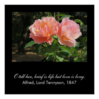 Brief is life but love is long (Alfred Tennyson) Poster