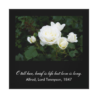 Brief is life but love is long (Tennyson quote) Gallery Wrapped Canvas