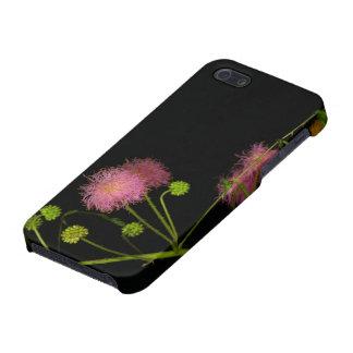 Brier sensible iPhone 5 funda