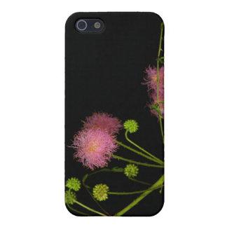 Brier sensible iPhone 5 carcasas