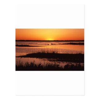 Brigantine NWR at Sunset.jpg Postcard