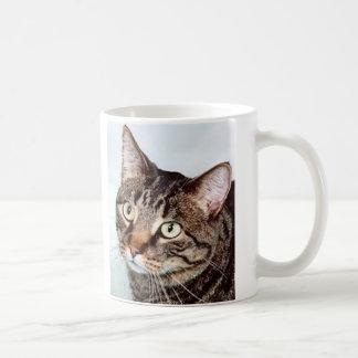 Briggs Cat Mug