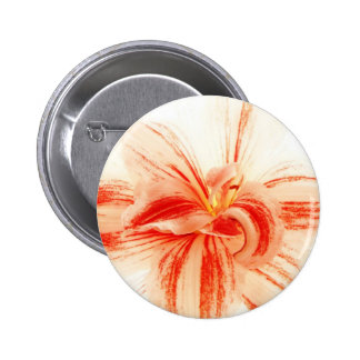 Bright Amaryllis Flower Button