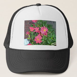 Bright and beautiful pink dahlia flowers trucker hat