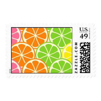 Bright and Bold Citrus Slices Stamp