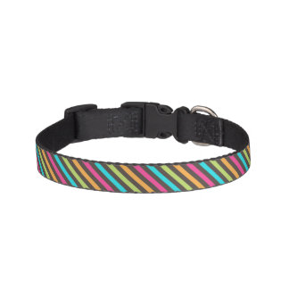 Bright and Bold Striped Dog Collar