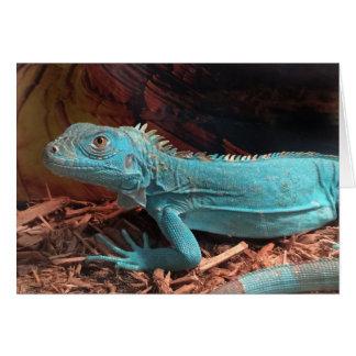 Bright Aqua Blue Iguana Card