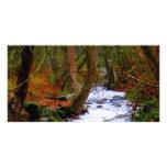 Bright Autumn River Photocard Custom Photo Card
